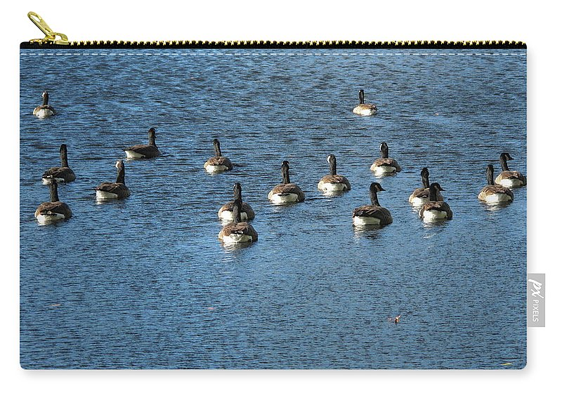 Animals Carry-all Pouch featuring the photograph Wild Birds And Pond by Frank Romeo