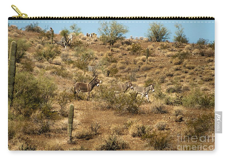 Burro Carry-all Pouch featuring the photograph Wild Burros by Robert Bales