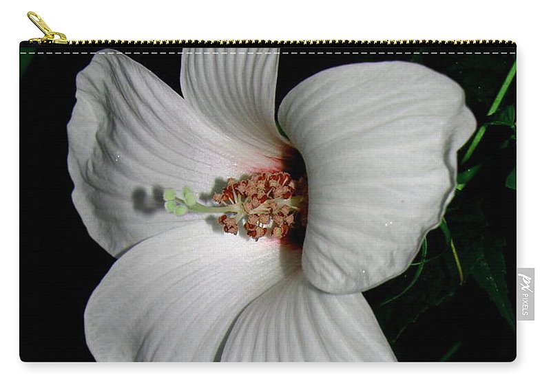 Hibiscus Carry-all Pouch featuring the photograph Wild Cotton by Karen Beasley