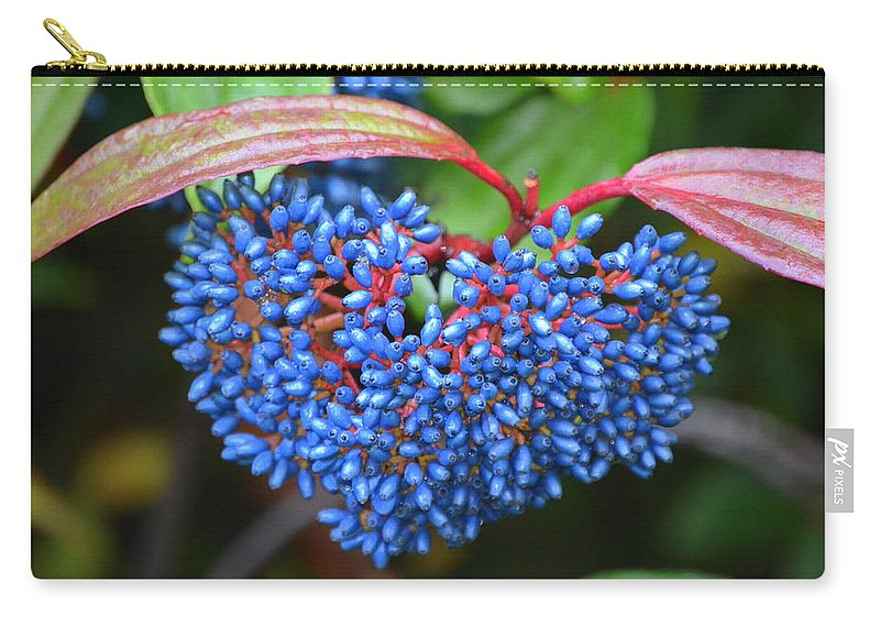 Fruits November Carry-all Pouch featuring the photograph Wild Fruits2 by Riad Belhimer