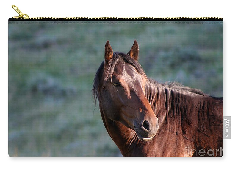 Animal Carry-all Pouch featuring the photograph Wild Horse by Sabrina L Ryan