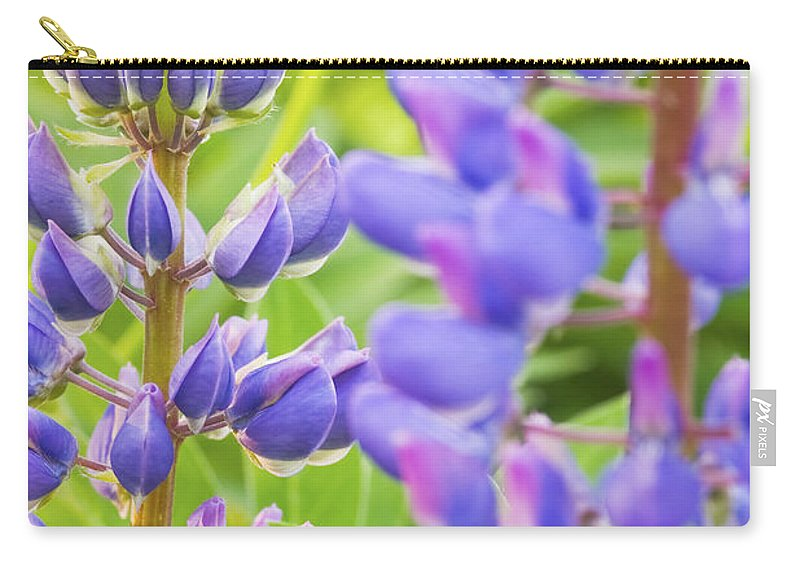 Lupine Carry-all Pouch featuring the photograph Wild Lupine Flowers by Keith Webber Jr