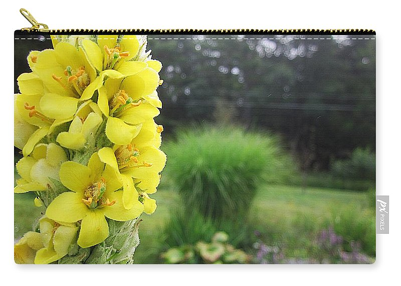 Mullein Carry-all Pouch featuring the photograph Wild Mullein by MTBobbins Photography