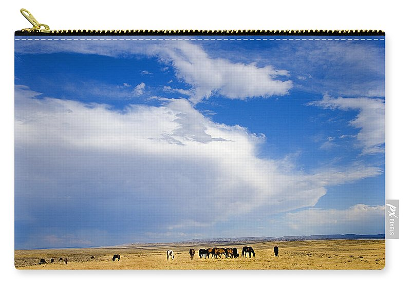 Wild Mustangs Carry-all Pouch featuring the photograph Wild Mustang Herd Grazing by Rich Franco