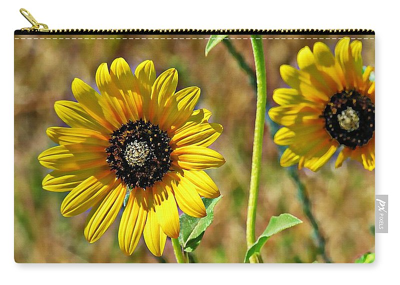 Sunflowers Carry-all Pouch featuring the photograph Wild One by Adam Vance