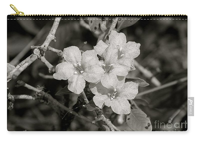 Wild Petunia Carry-all Pouch featuring the photograph Wild Petunias In Black And White by Elisa Yinh