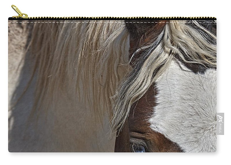 Wild Pinto Carry-all Pouch featuring the photograph Wild Pinto by Wes and Dotty Weber