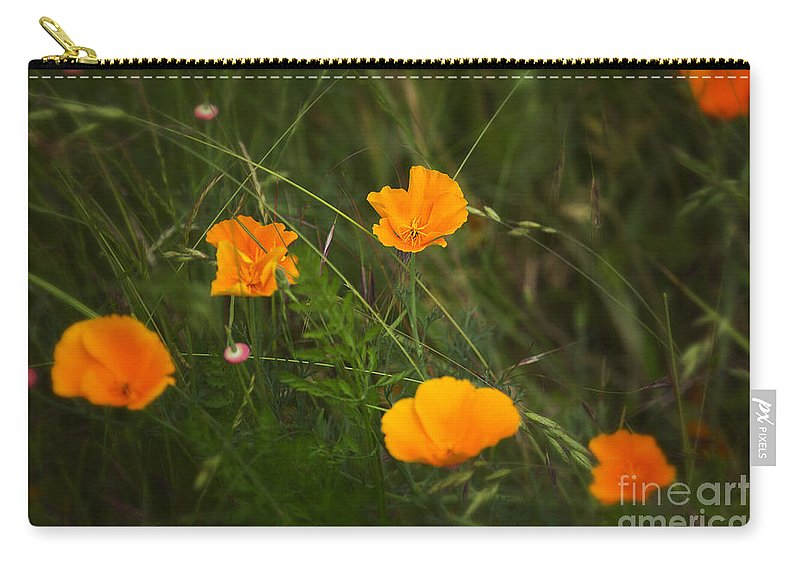 Poppy Carry-all Pouch featuring the photograph Wild Poppies by Belinda Greb
