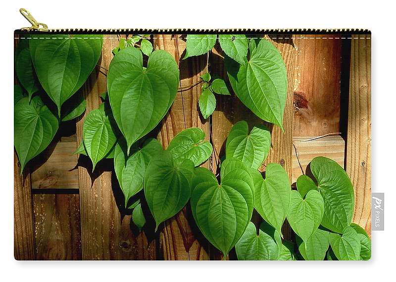 Leaf Carry-all Pouch featuring the photograph Wild Potato Vine 2 by David Weeks
