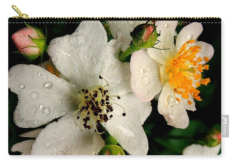Rose Carry-all Pouch featuring the photograph Wild Rose by Mim White