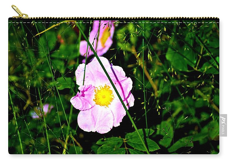 Wild Rose Carry-all Pouch featuring the photograph Wild Rose by Tara Potts