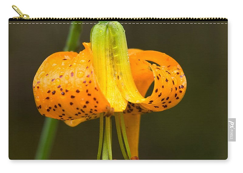 Flowers Carry-all Pouch featuring the photograph Wild Tiger Lily by Paul DeRocker