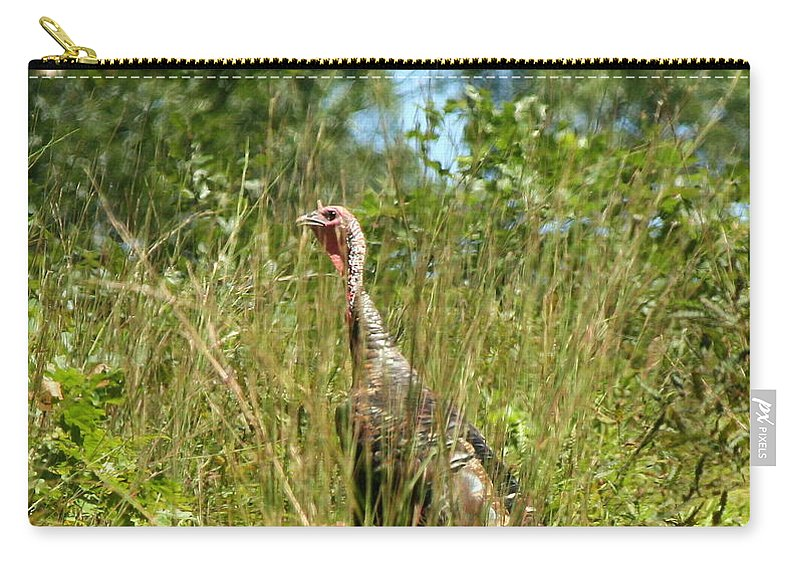 Turkey Carry-all Pouch featuring the photograph Wild Turkey In The Sun by Neal Eslinger