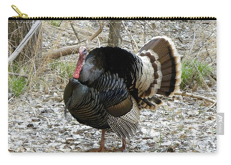 Animal Carry-all Pouch featuring the photograph Wild Turkey Mnt Zion Ut by Margarethe Binkley