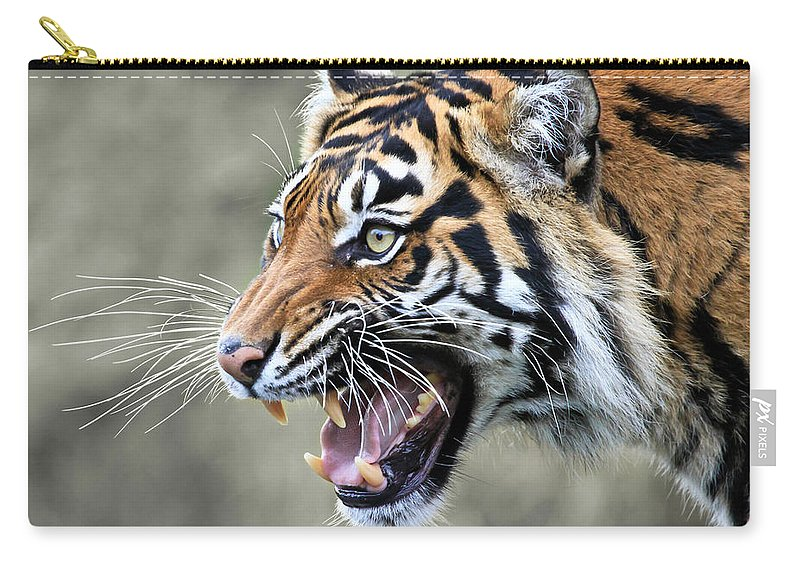 Tiger Carry-all Pouch featuring the photograph Wildcat II by Athena Mckinzie