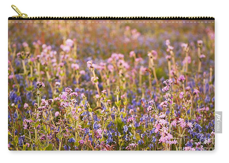 Back Carry-all Pouch featuring the photograph Wildflower Dusk by Anne Gilbert