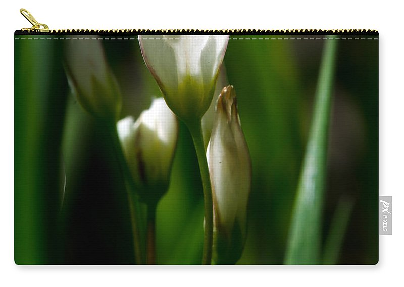 Flower Carry-all Pouch featuring the photograph Wildflower by Linda Shannon Morgan