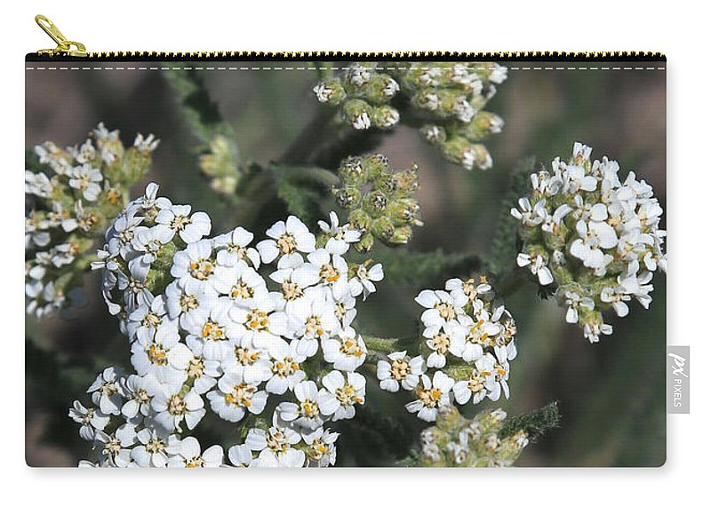 White Yarrow Carry-all Pouch featuring the photograph Wildflowers - White Yarrow by Carol Groenen