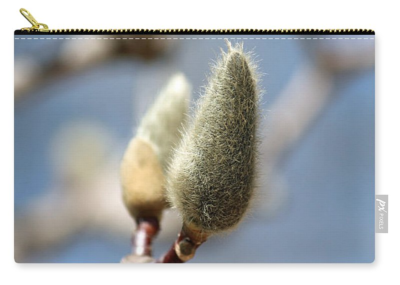 Willow Carry-all Pouch featuring the photograph Magnolia Buds by Jamie Smith