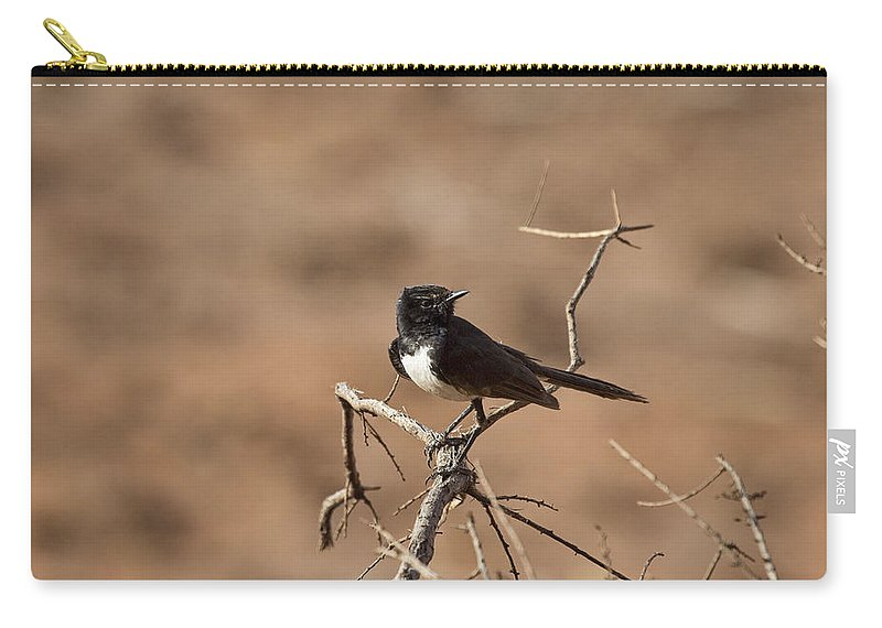 Willy Wagtail Carry-all Pouch featuring the photograph Willy Wagtail V7 by Douglas Barnard