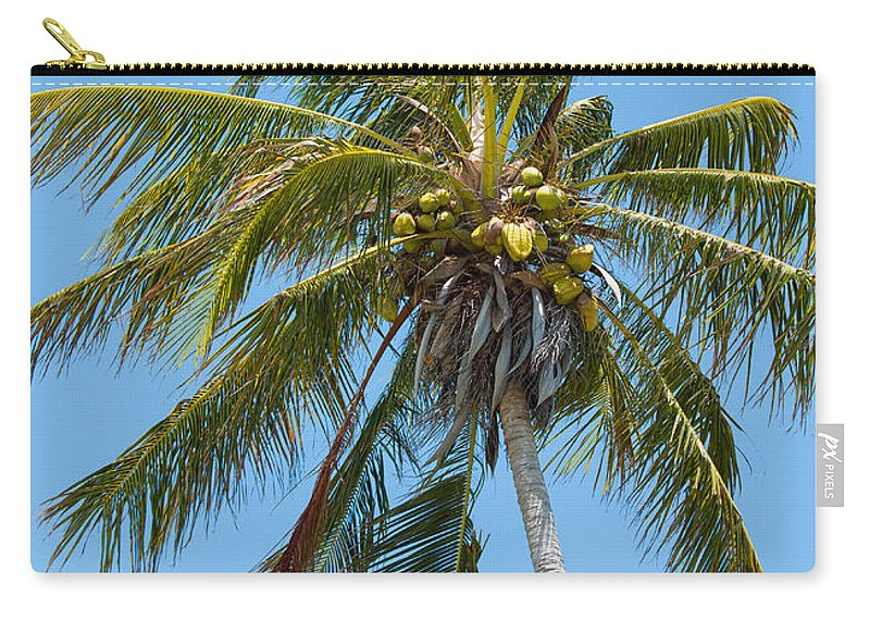 Art Carry-all Pouch featuring the photograph Windblown Coconut Palm by John M Bailey