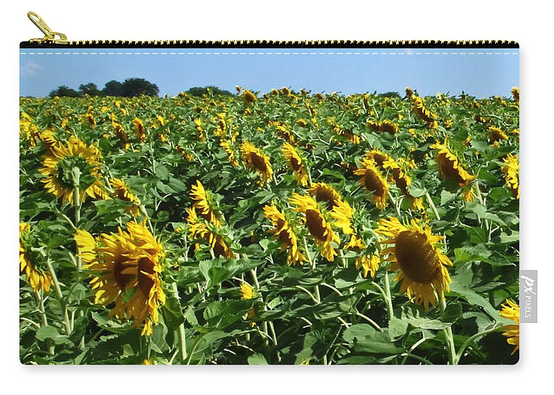 Sunflower Carry-all Pouch featuring the photograph Windblown Sunflowers by Robert Frederick