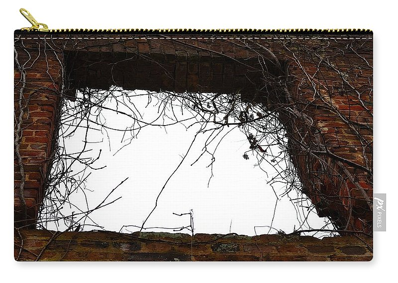 Sweetwater Creek State Park Carry-all Pouch featuring the photograph Window Through Time by Tara Potts
