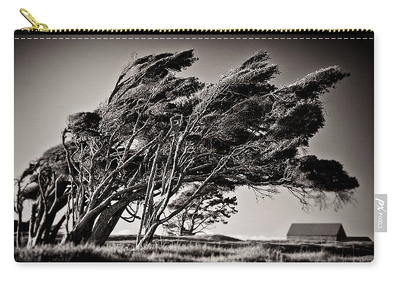 Windswept Trees Carry-all Pouch featuring the photograph Windswept by Dave Bowman
