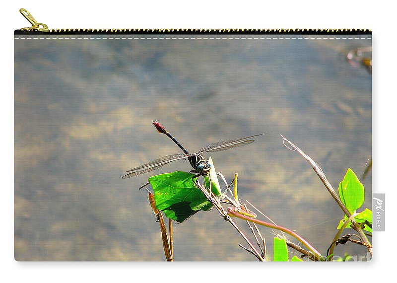 Dragonfly Carry-all Pouch featuring the photograph Winged Critter by Anita Lewis