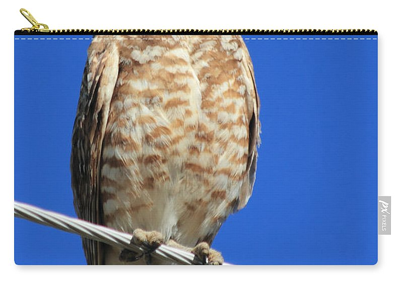 Owl Carry-all Pouch featuring the photograph Wink by Shane Bechler
