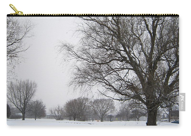 Winter Carry-all Pouch featuring the photograph Winter Afternoon 4 2013 by Mick M Brummund