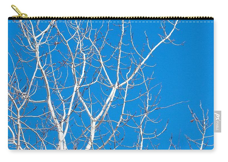 Winter Carry-all Pouch featuring the photograph Winter by Ann Horn