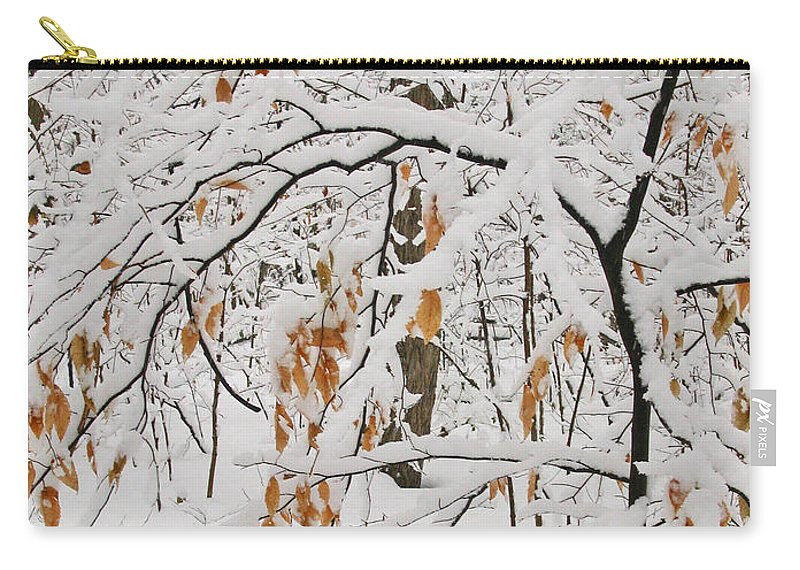 Winter Carry-all Pouch featuring the photograph Winter Branches by Ann Horn
