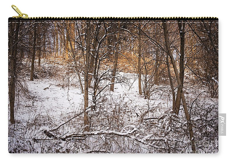 Winter Carry-all Pouch featuring the photograph Winter Forest by Elena Elisseeva