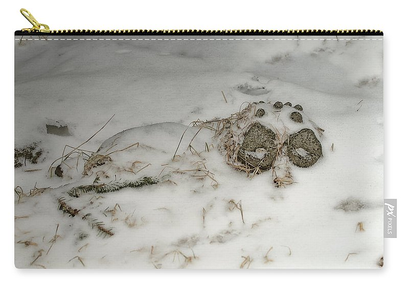 Garden Ornaments Carry-all Pouch featuring the photograph Winter Garden Guardian by Susan Capuano