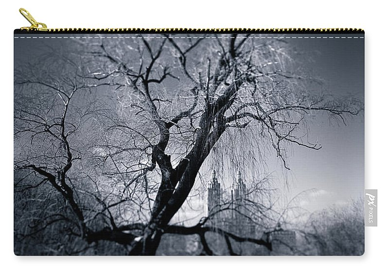 New York Carry-all Pouch featuring the photograph Winter In Central Park by Dave Bowman