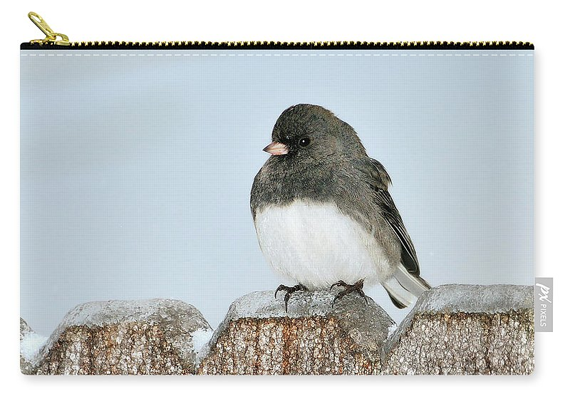 Dark Eyed Junco Carry-all Pouch featuring the photograph Winter Junco by Betty LaRue
