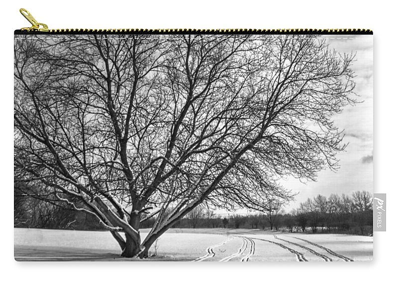 Tree Carry-all Pouch featuring the photograph Winter Lines by Lauri Novak