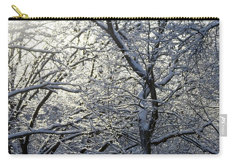 Winter Carry-all Pouch featuring the photograph Winter by Molly Picklesimer