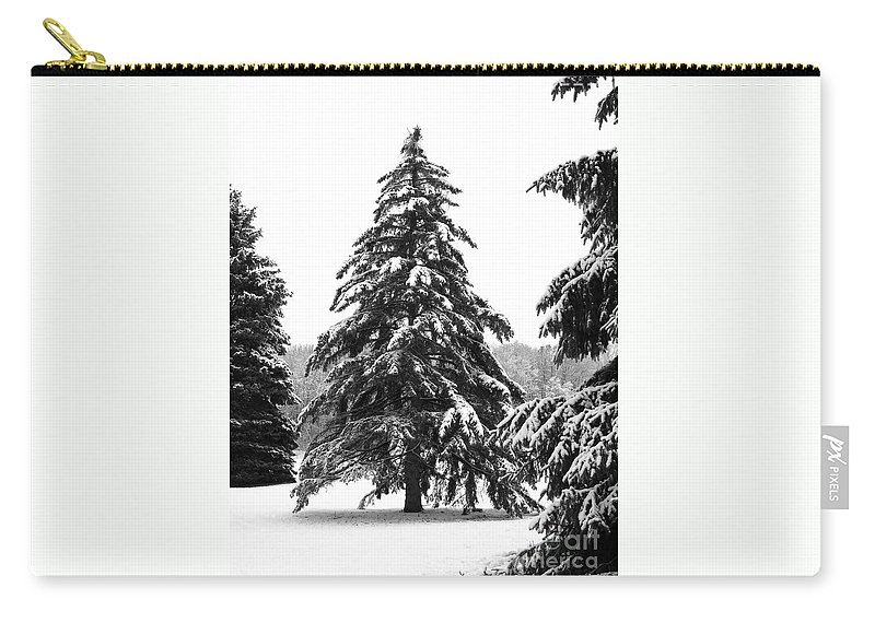 Winter Carry-all Pouch featuring the photograph Winter Pines by Ann Horn