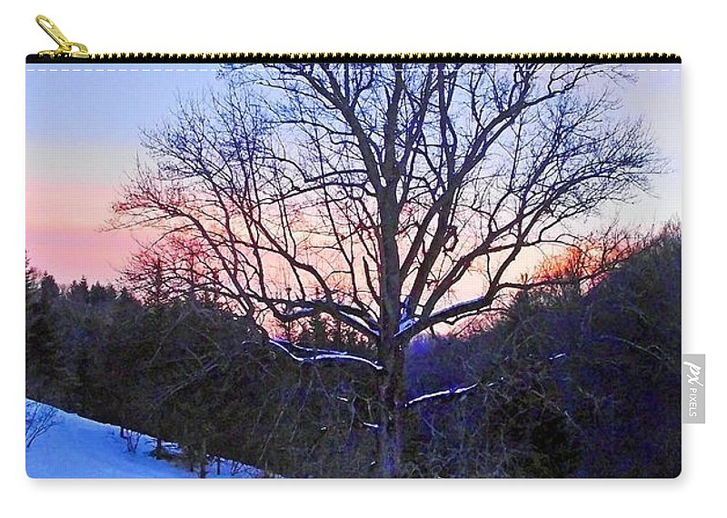 Plants Carry-all Pouch featuring the photograph Winter Poplar Tree by Duane McCullough
