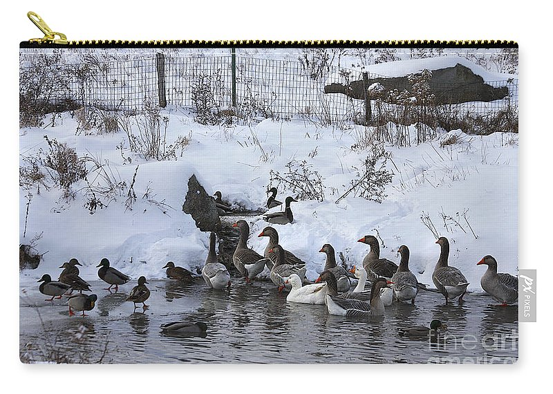 Winter Carry-all Pouch featuring the photograph Winter Swimming Hole by Deborah Benoit
