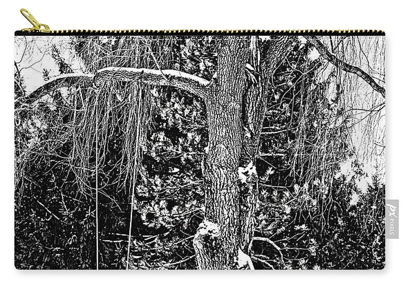 Ontario Carry-all Pouch featuring the photograph Winter Swing by Steve Harrington