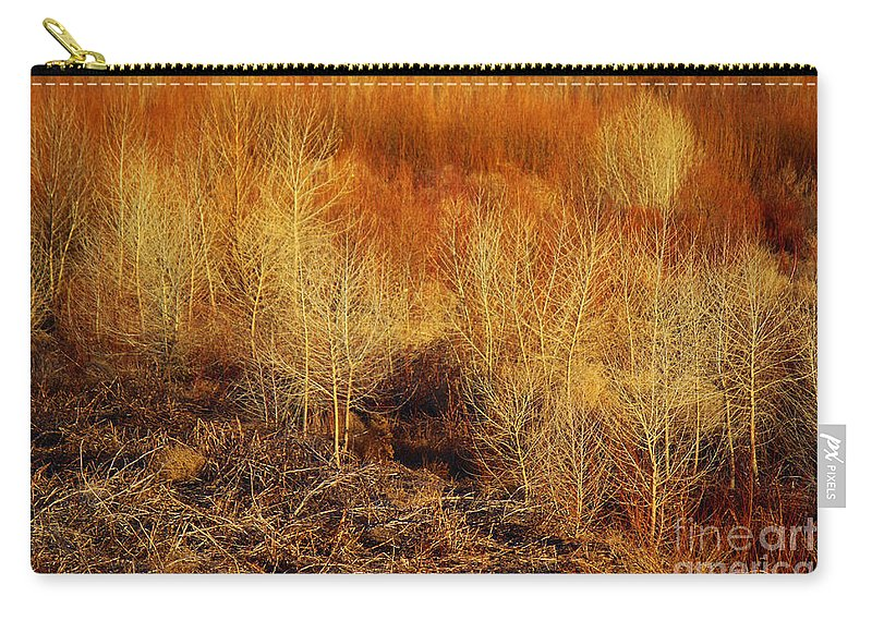 Roena King Carry-all Pouch featuring the photograph Winter Trees Color 3 by Roena King