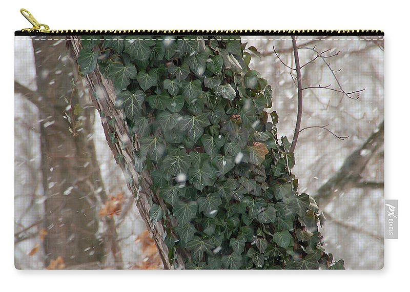 Vine Carry-all Pouch featuring the photograph Winter Vine by Aimee L Maher ALM GALLERY