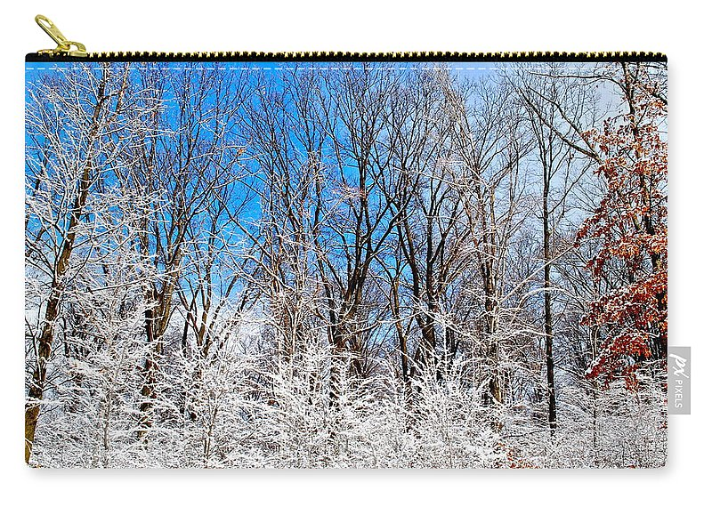 Winter Carry-all Pouch featuring the photograph Winter Wonderland by Frozen in Time Fine Art Photography