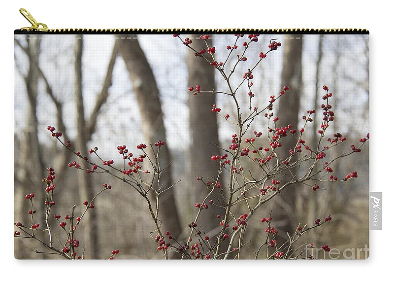 Winterberry Carry-all Pouch featuring the photograph Winterberries by Teresa Mucha