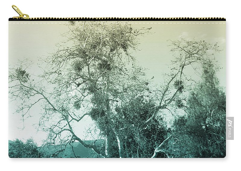 Landscape Carry-all Pouch featuring the photograph Winter's Tree by Kathleen Grace