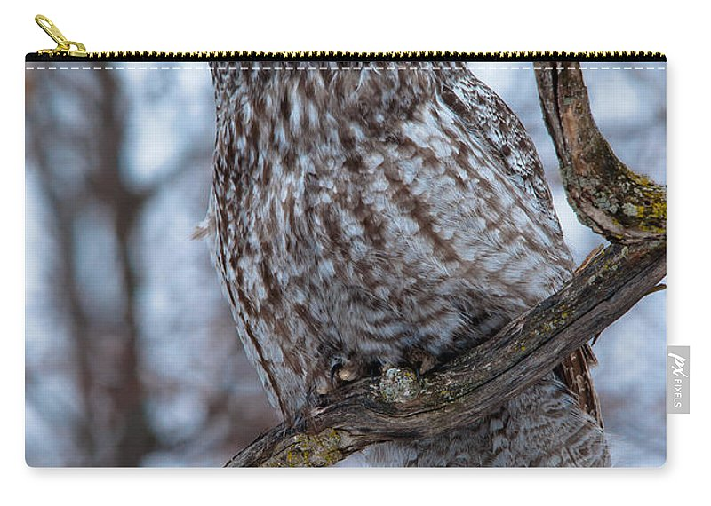 Owls Carry-all Pouch featuring the photograph Wisdom by Cheryl Baxter