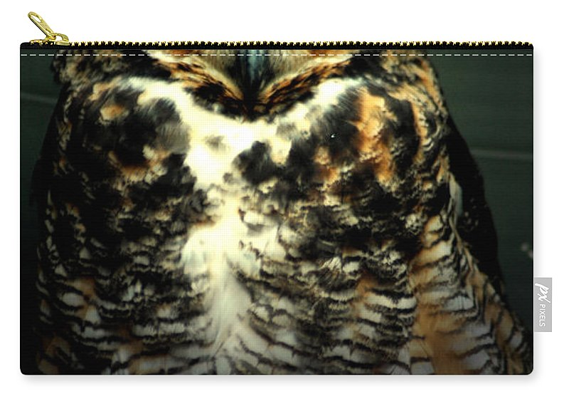 Owl Carry-all Pouch featuring the photograph Wise by David Weeks